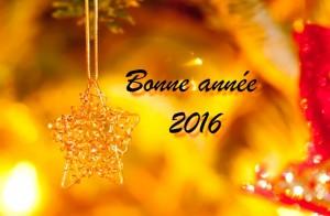 bonne-annee-8719